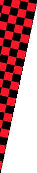 banner left checkered image